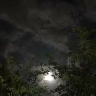 ضلام الليل اقوال وحكم واقتباسات